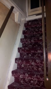 These are stairs -- just in case you were mistaking them for a carpeted ladder.